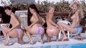 Ellen Saint , Nina Roberts , Julie Silver et Anita Queen : 4 bombes au bord de la piscine et un duo lesbien torride et débridé au god pour deux d'entre elles