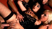 Priscila Sol , Bibi Fox , Melissa Black , Nikki Sun et Sarah Twain : Orgie perverse avec 5 filles sublimes 2